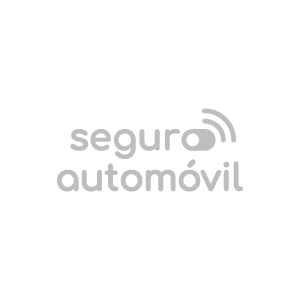Seguro-de-Automovil-Gris-copia.png